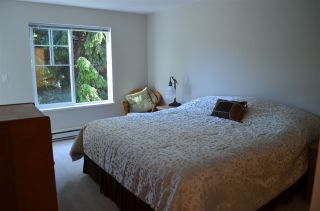 """Photo 10: 213 20200 56 Avenue in Langley: Langley City Condo for sale in """"THE BENTLEY"""" : MLS®# R2068739"""