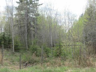 Photo 47: 63202 RR 194: Rural Thorhild County House for sale : MLS®# E4246203