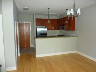 Photo 7: 216 4280 MONCTON Street in Richmond: Steveston South Condo for sale : MLS®# R2298381