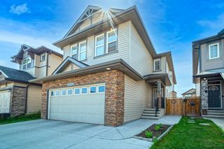 Photo 35: 31 SKYVIEW SHORES Link in Calgary: Skyview Ranch Detached for sale : MLS®# A1130937