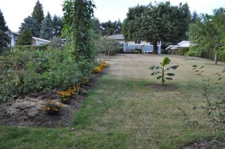 Photo 20: 29400 SUNVALLEY Crescent in Abbotsford: Aberdeen House for sale : MLS®# R2262605