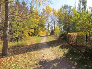 Photo 48: 1528 BLACKMORE Way in Edmonton: Zone 55 House for sale : MLS®# E4235174