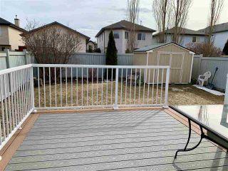 Photo 25: 3347 26 Avenue NW in Edmonton: Zone 30 House for sale : MLS®# E4235739