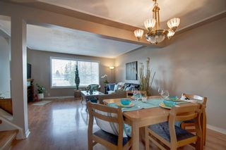 Photo 8: 40 Abergale Way NE in Calgary: Abbeydale Detached for sale : MLS®# A1093008