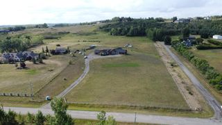 Photo 49: 20169 Dewinton Riding Club Road E: Rural Foothills County Detached for sale : MLS®# A1140240
