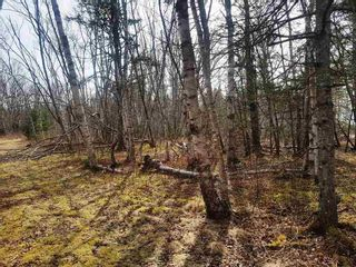 Photo 2: LOT 15 Fundy Bay Drive in Victoria Harbour: 404-Kings County Vacant Land for sale (Annapolis Valley)  : MLS®# 202105997
