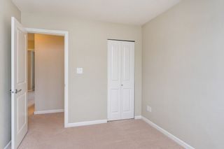 Photo 16: 10109 240A Street in Maple Ridge: Albion House for sale : MLS®# R2294447