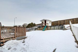 Photo 41: 144 Edgebrook Park NW in Calgary: Edgemont Detached for sale : MLS®# A1066773