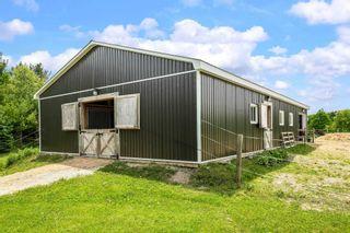 Photo 36: 796260 E 3rd Line in Mulmur: Rural Mulmur House (Bungalow) for sale : MLS®# X5265550
