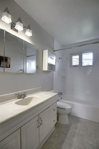 Photo 22: 48 DOVERTHORN Place SE in Calgary: Dover Detached for sale : MLS®# A1023255