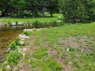 Photo 5: East Uniacke Road in Mount Uniacke: 105-East Hants/Colchester West Vacant Land for sale (Halifax-Dartmouth)  : MLS®# 202115648