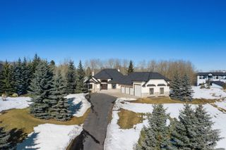 Photo 4: 92 Church Ranches Boulevard in Rural Rocky View County: Rural Rocky View MD Detached for sale : MLS®# A1079718