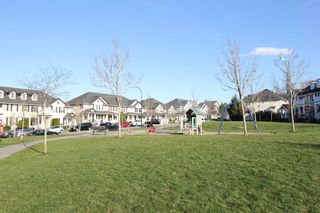 """Photo 17: 76 18199 70 Avenue in Surrey: Cloverdale BC Townhouse for sale in """"Augusta"""" (Cloverdale)  : MLS®# R2422353"""