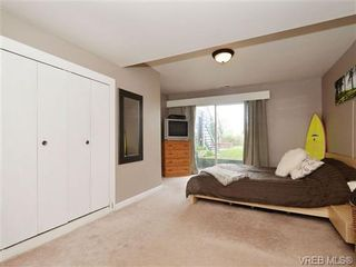 Photo 17: 3510 Richmond Rd in VICTORIA: SE Mt Tolmie House for sale (Saanich East)  : MLS®# 703026