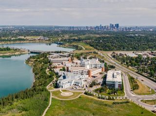 Photo 41: 1320 Craig Road SW in Calgary: Chinook Park Detached for sale : MLS®# A1139348