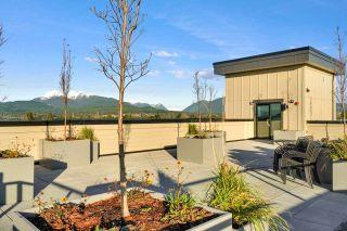 Photo 18: 201 22638 119 AVENUE in Maple Ridge: East Central Condo for sale : MLS®# R2521537