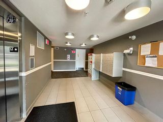 Photo 33: 1307 240 Skyview Ranch Road NE in Calgary: Skyview Ranch Apartment for sale : MLS®# A1133467