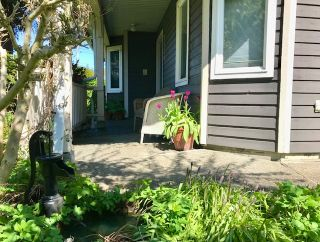 Photo 4: 3320 GARDEN CITY Road in Richmond: West Cambie House for sale : MLS®# R2568135