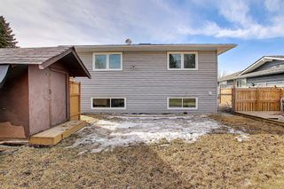 Photo 37: 315 Banister Drive: Okotoks Detached for sale : MLS®# A1089358