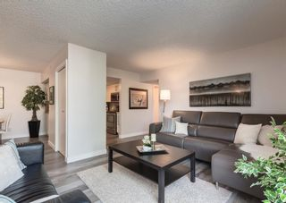 Photo 6: 402 1540 29 Street NW in Calgary: St Andrews Heights Apartment for sale : MLS®# A1141657