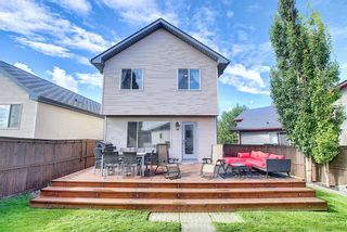 Photo 25: 83 Cranberry Square SE in Calgary: Cranston Detached for sale : MLS®# A1141216