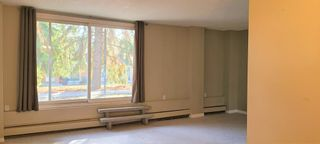 Photo 7: 101 3518 44 Street SW in Calgary: Glenbrook Apartment for sale : MLS®# A1093366
