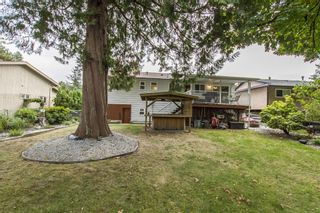 Photo 25: 21107 117th Ave in Maple Ridge: House for sale : MLS®# R2209270