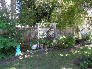 Photo 4: 1504 Comox Ave in : CV Comox (Town of) House for sale (Comox Valley)  : MLS®# 850587