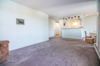 Photo 14: 611 8604 48 Avenue NW in Calgary: Bowness Apartment for sale : MLS®# A1107352