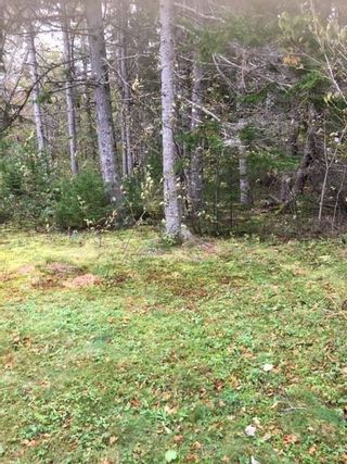 Photo 22: 1883 West Apple River in Apple River: 102S-South Of Hwy 104, Parrsboro and area Residential for sale (Northern Region)  : MLS®# 201910095