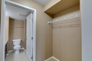 Photo 29: 5307 16969 24 Street SW in Calgary: Bridlewood Apartment for sale : MLS®# A1146769
