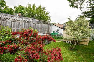 Photo 27: 3696 Albert Street in Halifax: 3-Halifax North Residential for sale (Halifax-Dartmouth)  : MLS®# 202116346