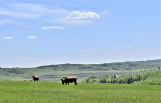 Photo 24: 498 Ave W & Hwy 22: Rural Foothills County Land for sale : MLS®# C4302344