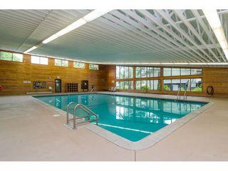 "Photo 28: 231 7449 140 Street in Surrey: East Newton Townhouse for sale in ""Glencoe Estates"" : MLS®# R2569593"