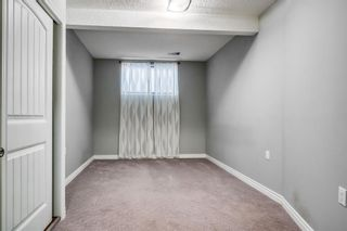 Photo 22: 23 Prestwick Parade SE in Calgary: McKenzie Towne Detached for sale : MLS®# A1148642