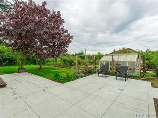 Photo 17: 599 Ridgegrove Ave in VICTORIA: SW Northridge House for sale (Saanich West)  : MLS®# 700992