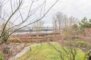 """Photo 31: 208 250 SALTER Street in New Westminster: Queensborough Condo for sale in """"PADDLERS LANDING"""" : MLS®# R2542712"""