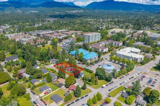 Photo 8: 12128 GARDEN Street in Maple Ridge: West Central House for sale : MLS®# R2599609
