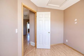 Photo 29: 172 ERIN MEADOW Way SE in Calgary: Erin Woods Detached for sale : MLS®# A1028932