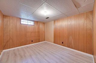 Photo 32: 10916 36A Avenue in Edmonton: Zone 16 House for sale : MLS®# E4246893