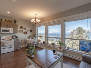 Photo 45: 3868 Gulfview Dr in : Na North Nanaimo House for sale (Nanaimo)  : MLS®# 871769