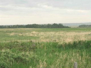 Photo 12: TWP 580 Rg Rd 240 Sturgeon County: Rural Sturgeon County Rural Land/Vacant Lot for sale : MLS®# E4248027