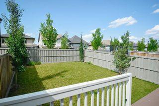Photo 37: 4073 ALLAN Crescent in Edmonton: Zone 56 House Half Duplex for sale : MLS®# E4256367