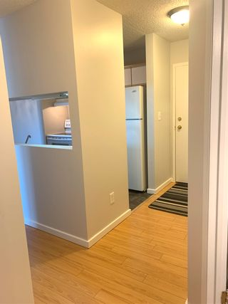 Photo 10: 206 5065 31 Avenue in Edmonton: Zone 29 Condo for sale : MLS®# E4246913