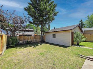 Photo 40: 216 Whitewood Place NE in Calgary: Whitehorn Detached for sale : MLS®# A1116052