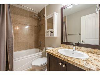"Photo 33: 17188 3A Avenue in Surrey: Pacific Douglas House for sale in ""PACIFIC DOUGLAS"" (South Surrey White Rock)  : MLS®# R2532680"