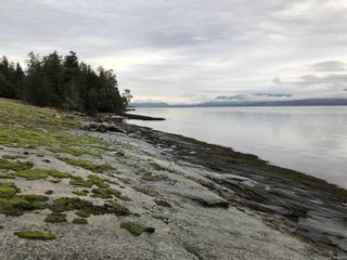 Photo 9: 374 Lupin Lane in THETIS ISLAND: Isl Thetis Island House for sale (Islands)  : MLS®# 844812