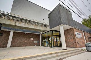 Photo 31: 17 Chapman Avenue in Toronto: O'Connor-Parkview House (Bungalow) for sale (Toronto E03)  : MLS®# E4904618