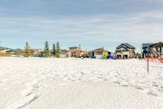 Photo 34: 320 Sunset Way: Crossfield Detached for sale : MLS®# A1061148