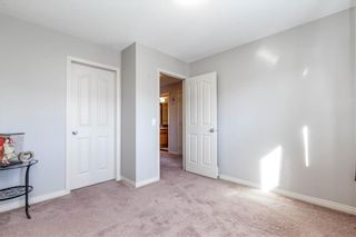 Photo 21: 360 COPPERPOND Boulevard SE in Calgary: Copperfield Detached for sale : MLS®# C4233493